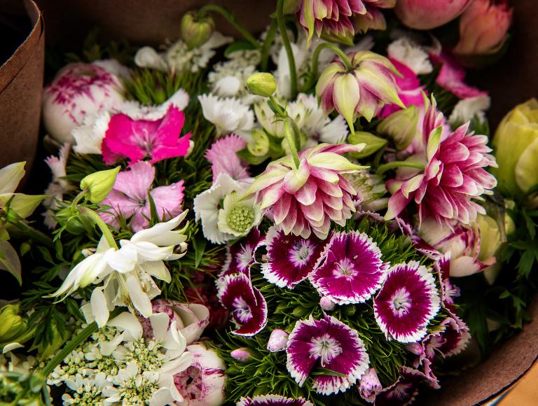 Organic flower farming