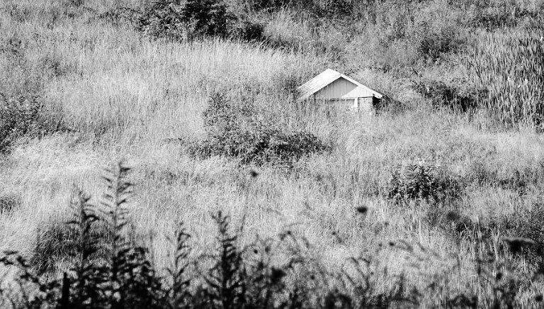 Springhouse-in-Hillside