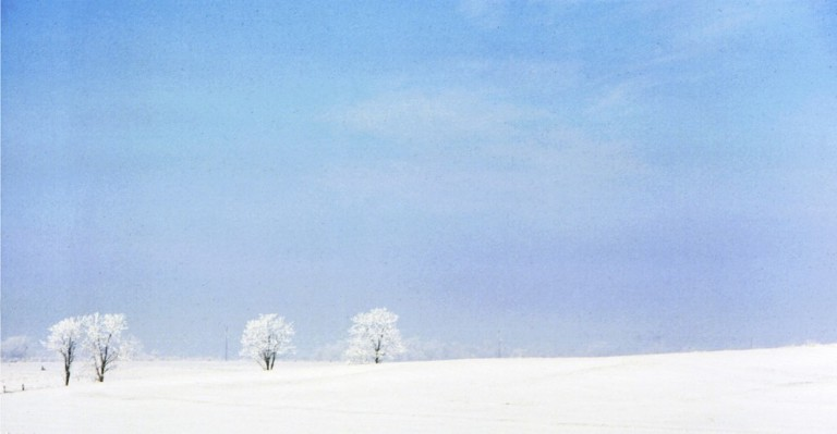 Zen-like photo of blue sky, white frost and snow
